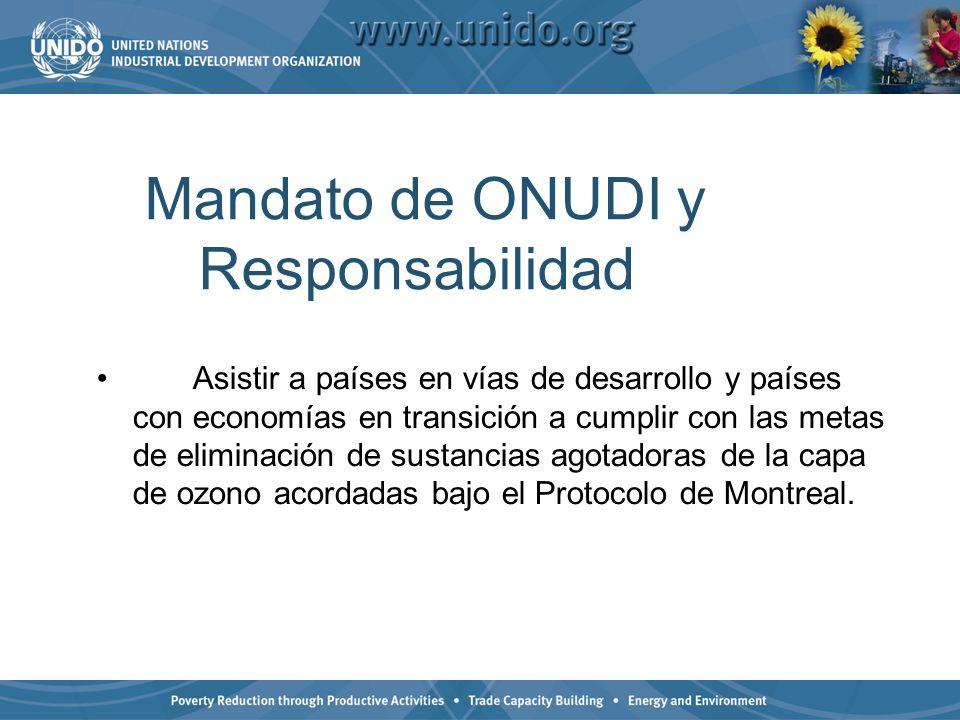 Mandato de ONUDI y Responsabilidad