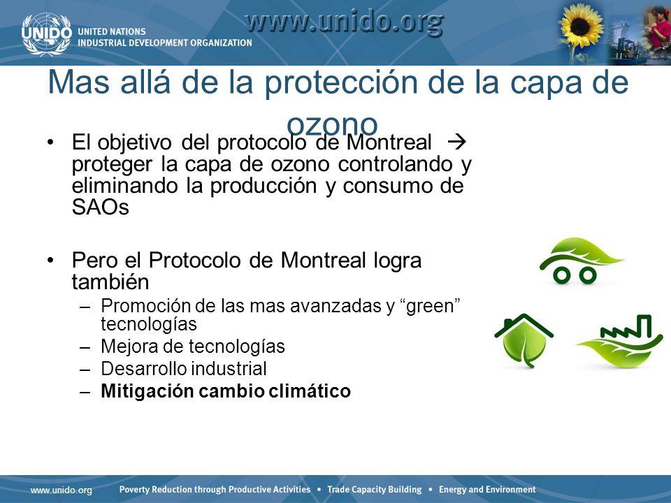 Mas allá de la protección de la capa de ozono