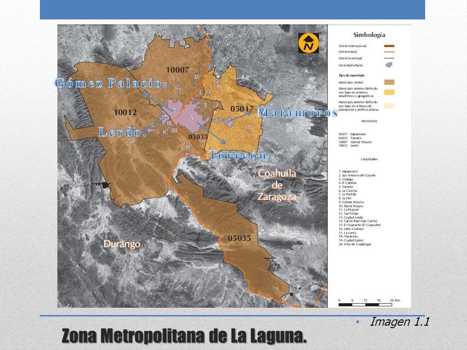 Zona Metropolitana de La Laguna.