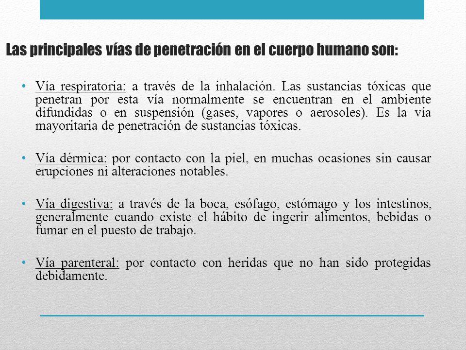 Las principales vías de penetración en el cuerpo humano son: