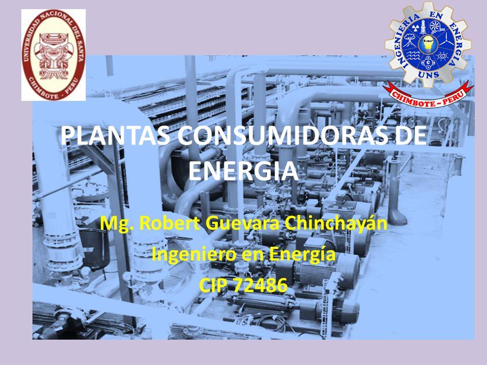 PLANTAS CONSUMIDORAS DE ENERGIA