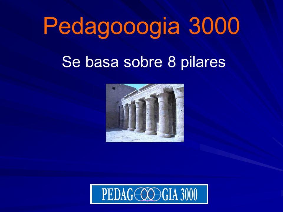 Pedagooogia 3000 Se basa sobre 8 pilares