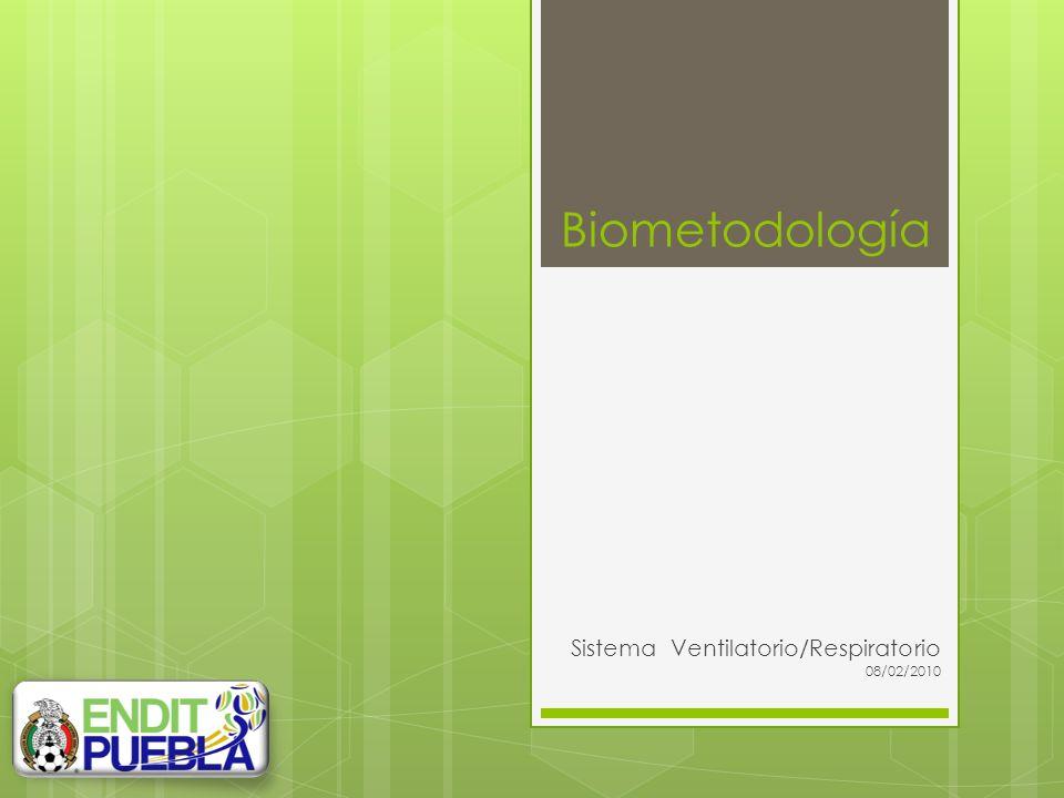 Sistema Ventilatorio/Respiratorio 08/02/2010