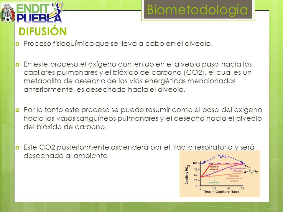 Biometodología DIFUSIÓN