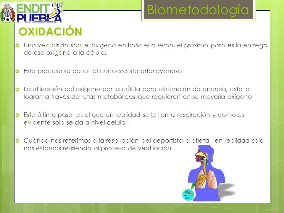 Biometodología OXIDACIÓN