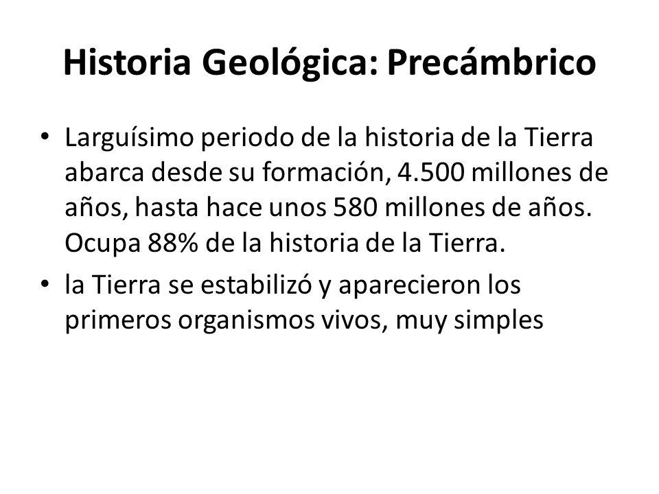 Historia Geológica: Precámbrico