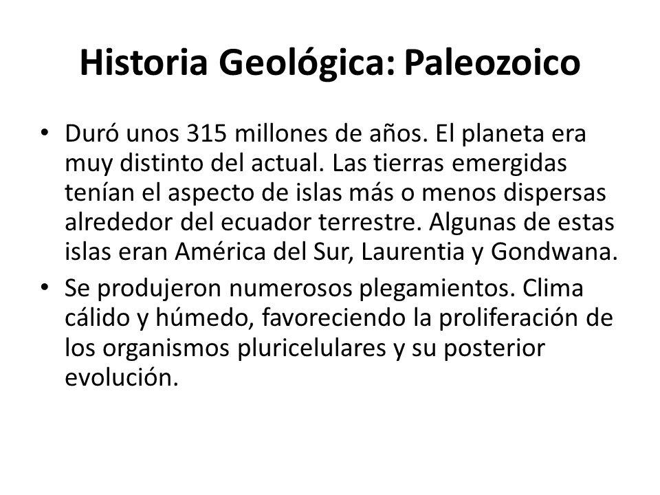 Historia Geológica: Paleozoico