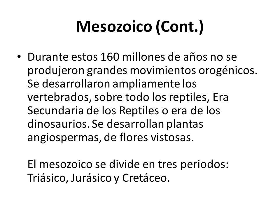 Mesozoico (Cont.)
