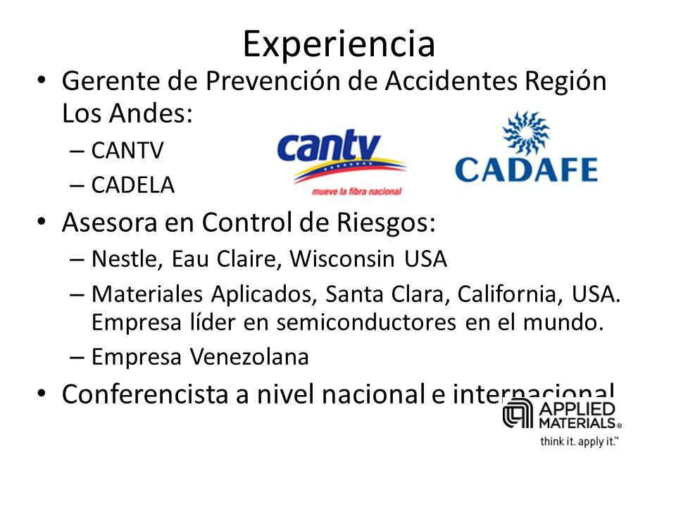 Experiencia Gerente de Prevención de Accidentes Región Los Andes: