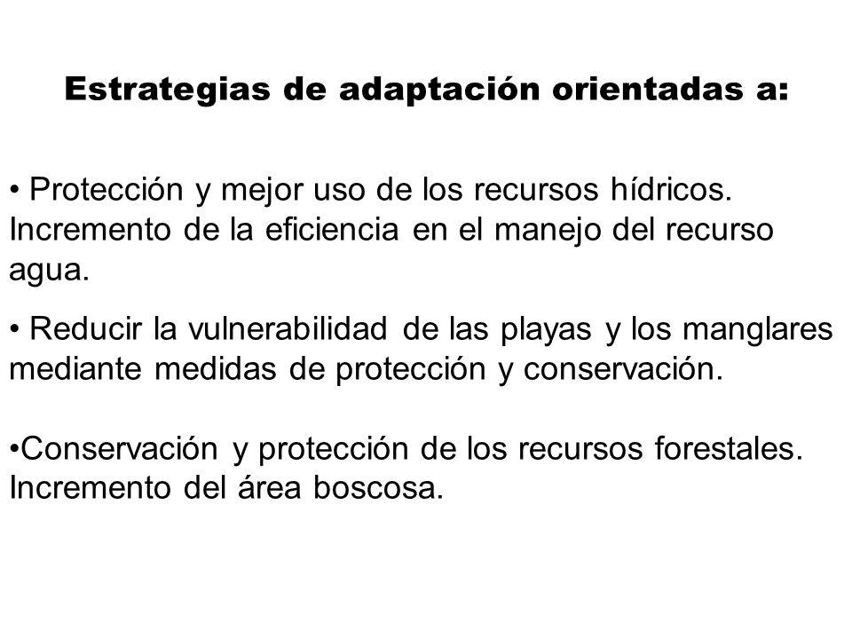 Estrategias de adaptación orientadas a:
