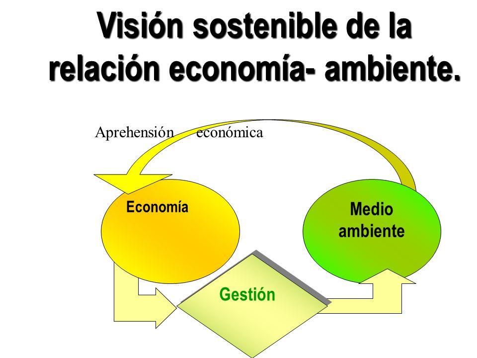 Visión sostenible de la relación economía- ambiente.