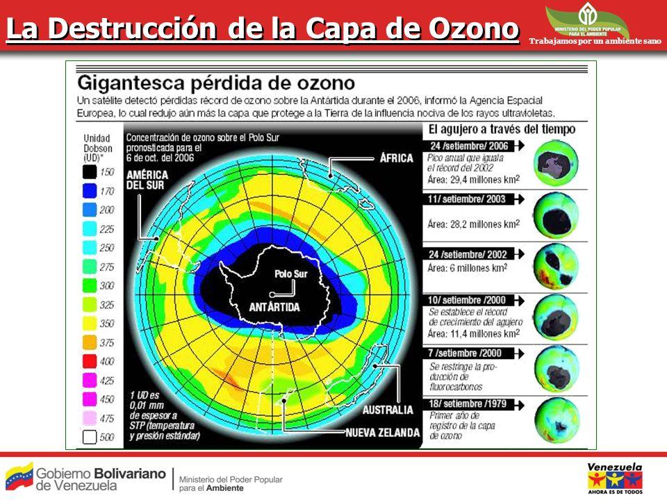 La Destrucción de la Capa de Ozono