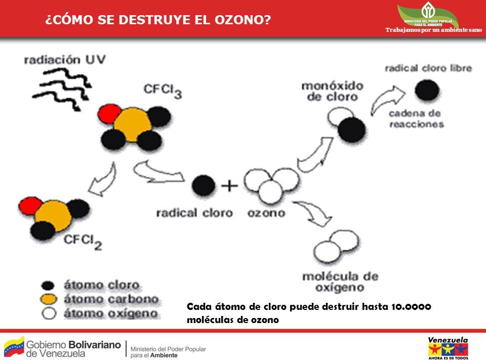 ¿CÓMO SE DESTRUYE EL OZONO