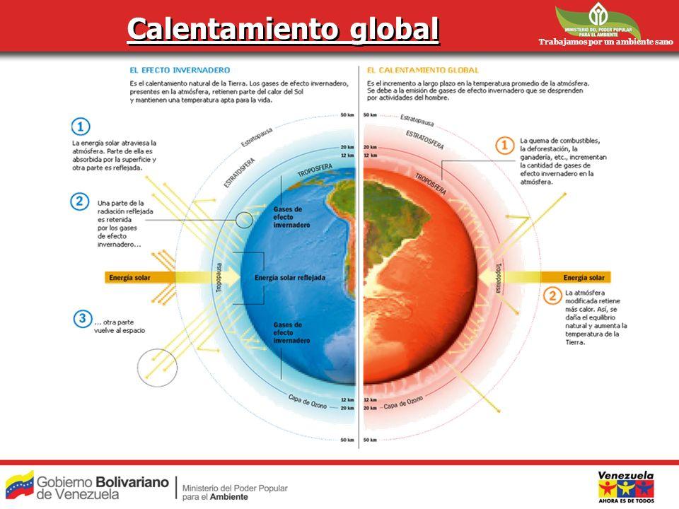 Calentamiento global Trabajamos por un ambiente sano