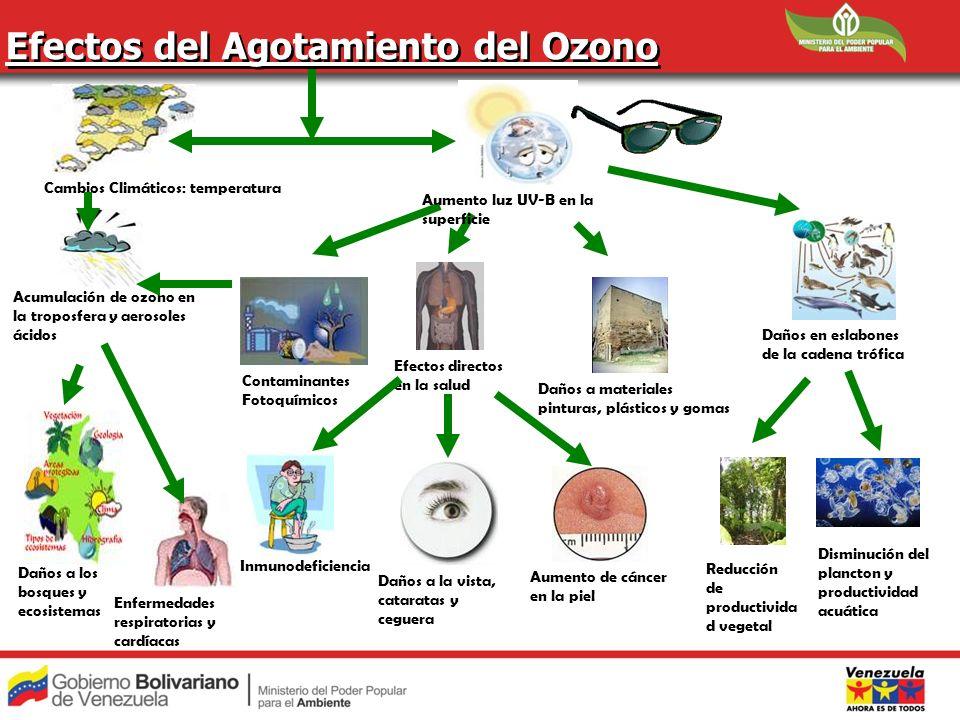 Efectos del Agotamiento del Ozono