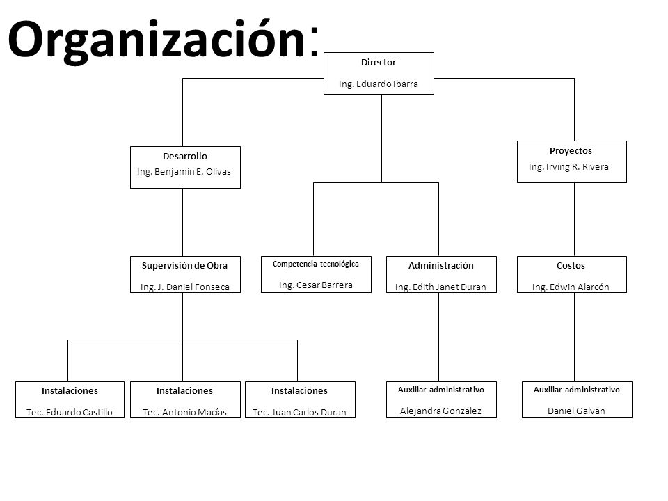 Organización: Director Ing. Eduardo Ibarra Proyectos Desarrollo