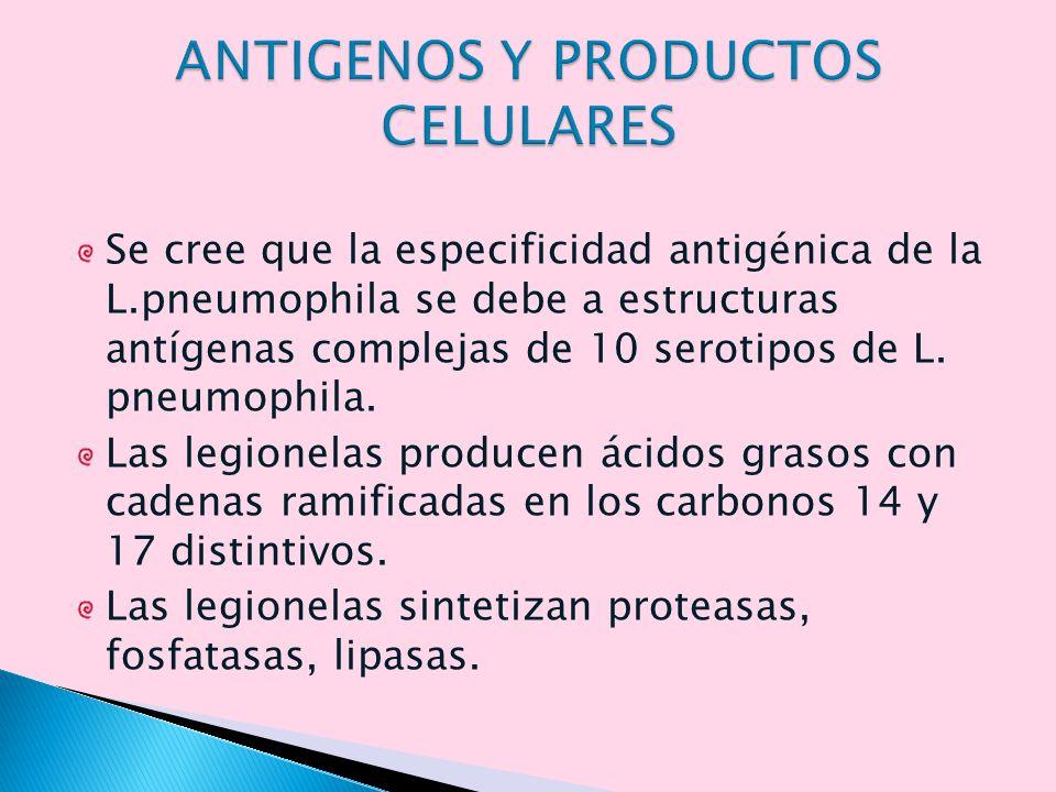 ANTIGENOS Y PRODUCTOS CELULARES