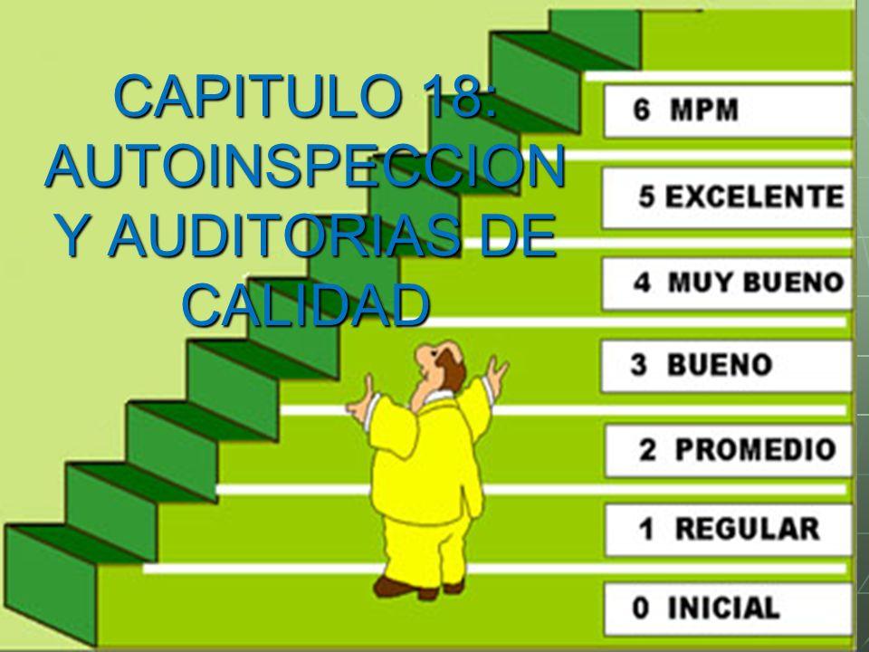 CAPITULO 18: AUTOINSPECCIONY AUDITORIAS DE CALIDAD