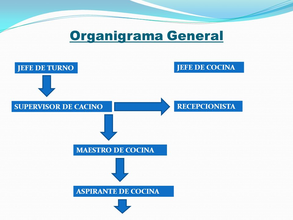 Organigrama General JEFE DE TURNO JEFE DE COCINA SUPERVISOR DE CACINO