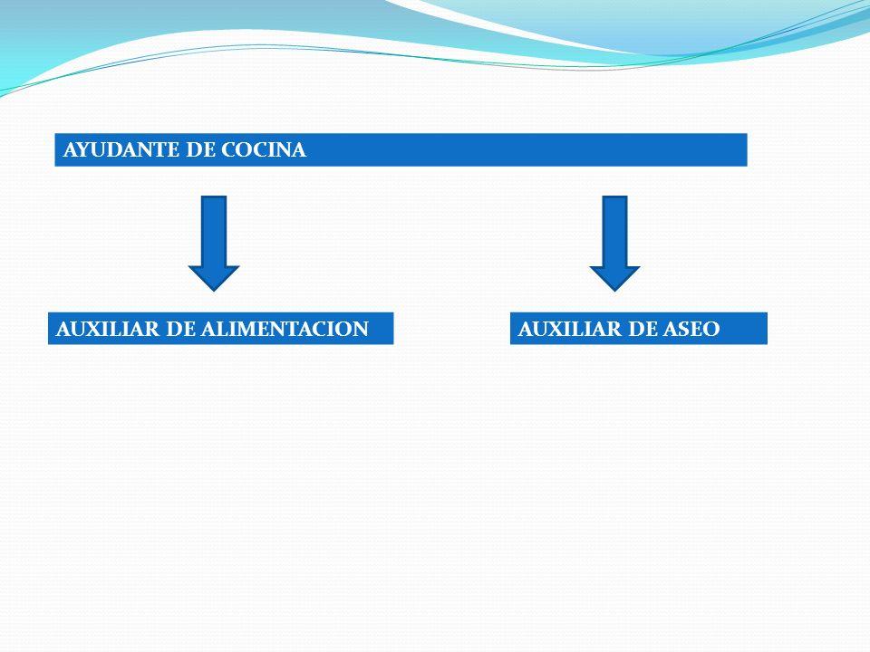 AYUDANTE DE COCINA AUXILIAR DE ALIMENTACION AUXILIAR DE ASEO