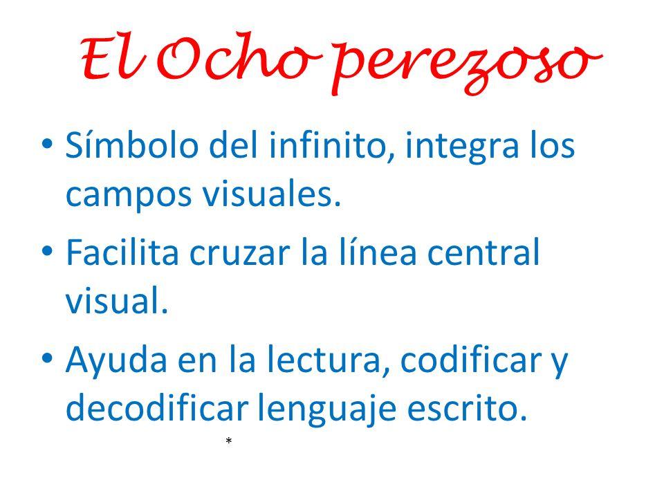 El Ocho perezoso Símbolo del infinito, integra los campos visuales.