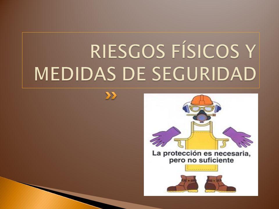 RIESGOS FÍSICOS Y MEDIDAS DE SEGURIDAD