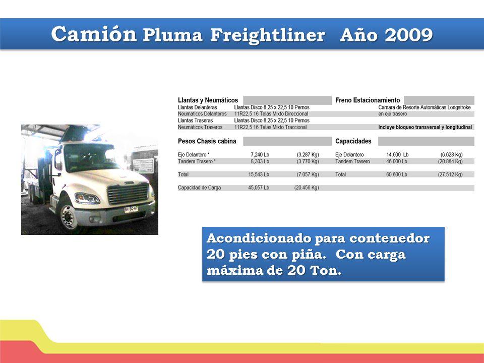 Camión Pluma Freightliner Año 2009
