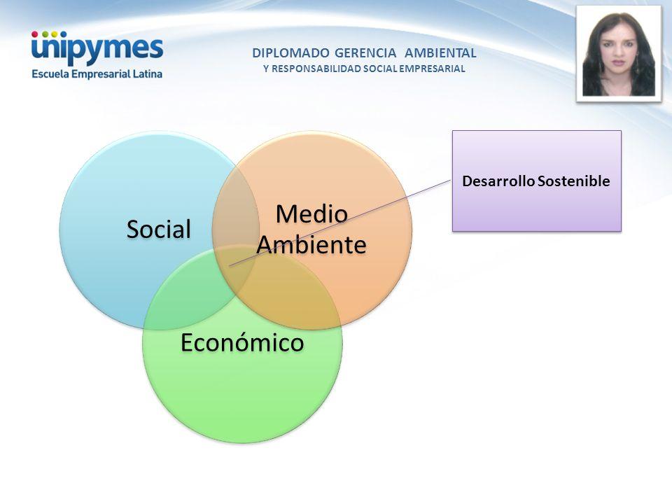 Medio Ambiente Social Económico Desarrollo Sostenible