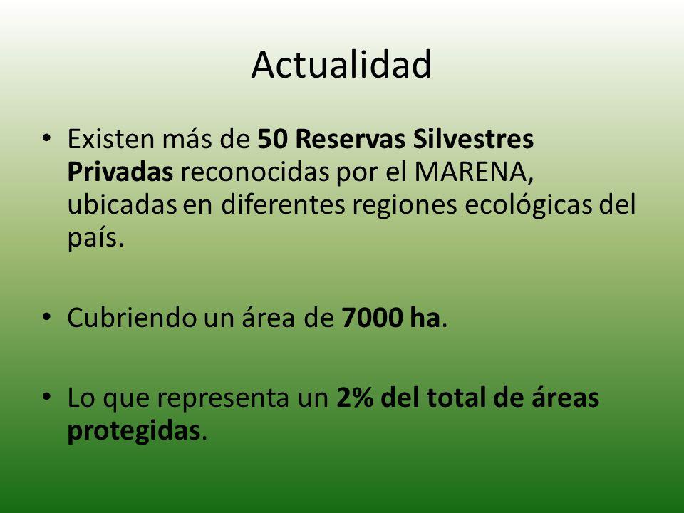 Actualidad Existen más de 50 Reservas Silvestres Privadas reconocidas por el MARENA, ubicadas en diferentes regiones ecológicas del país.
