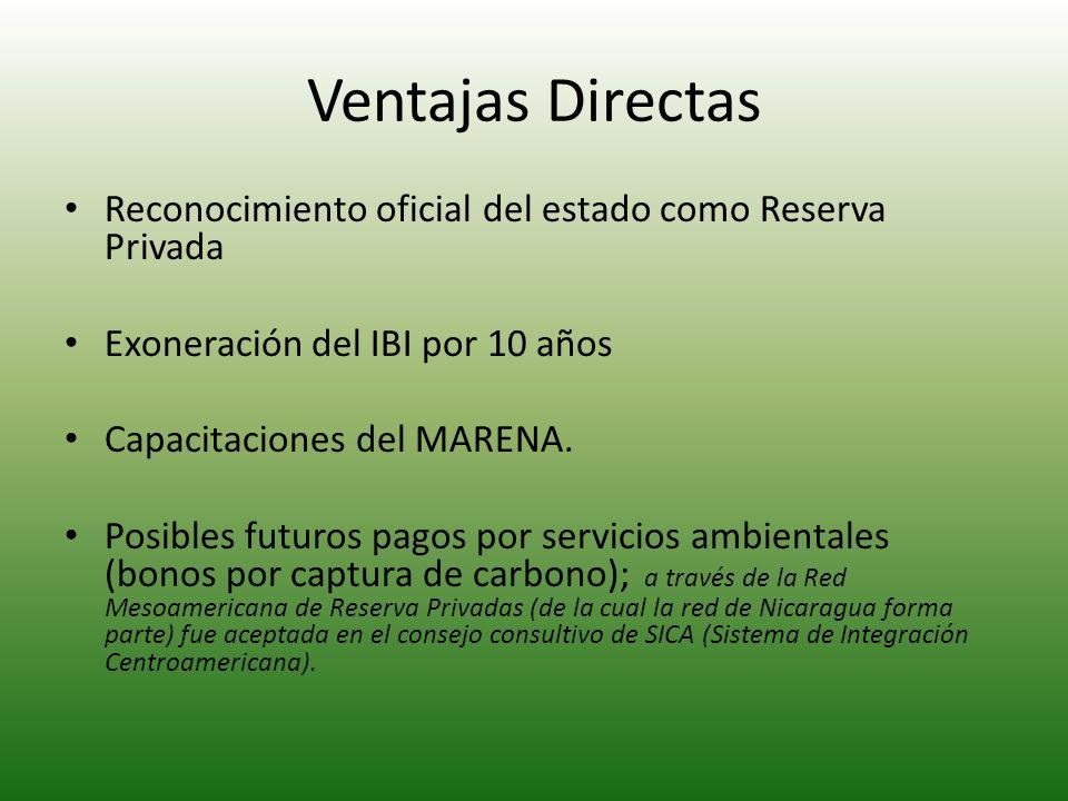 Ventajas Directas Reconocimiento oficial del estado como Reserva Privada. Exoneración del IBI por 10 años.