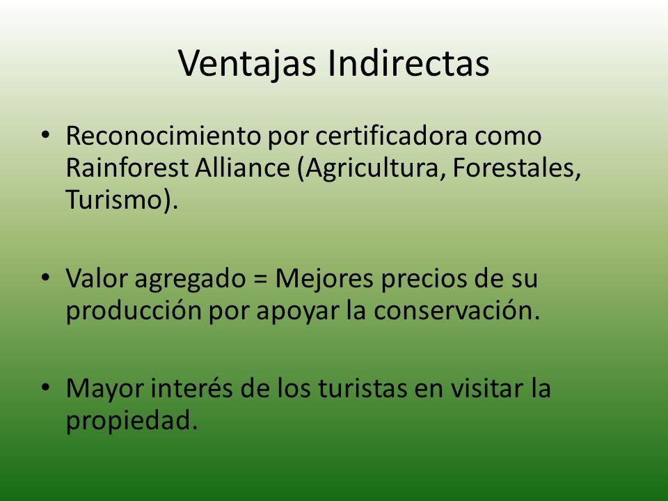 Ventajas Indirectas Reconocimiento por certificadora como Rainforest Alliance (Agricultura, Forestales, Turismo).
