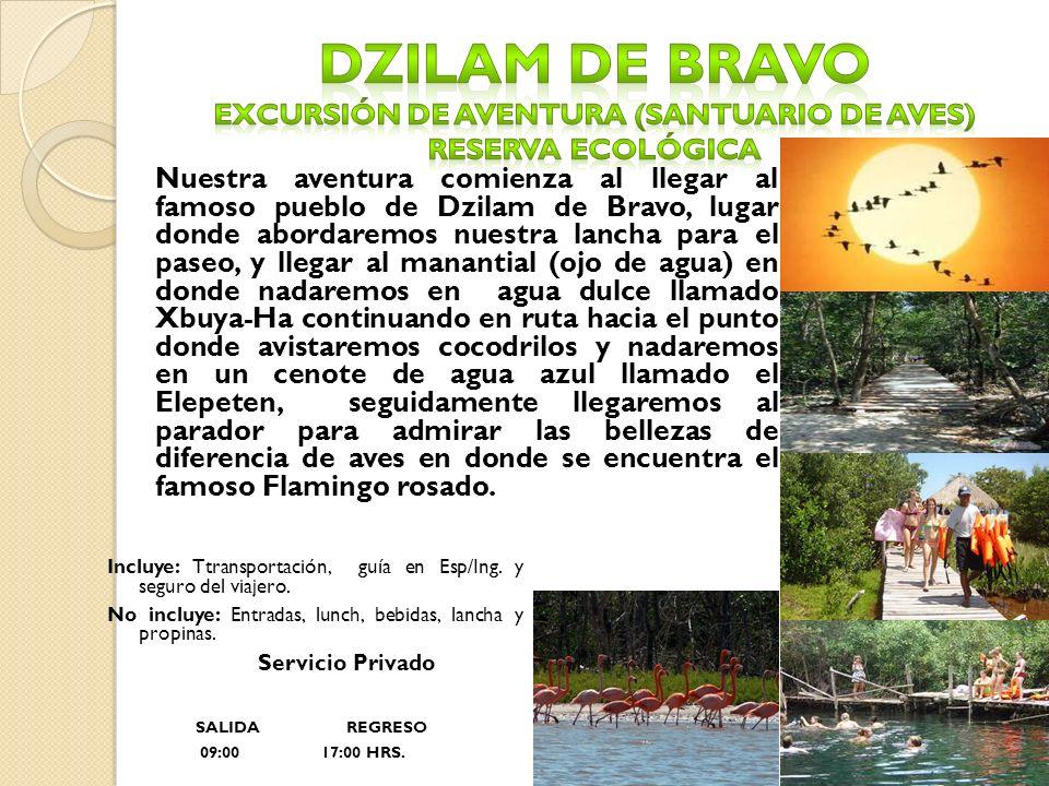 Dzilam de bravo excursión de aventura (santuario de aves) Reserva ecológica