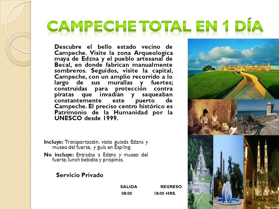 Campeche total en 1 día Servicio Privado