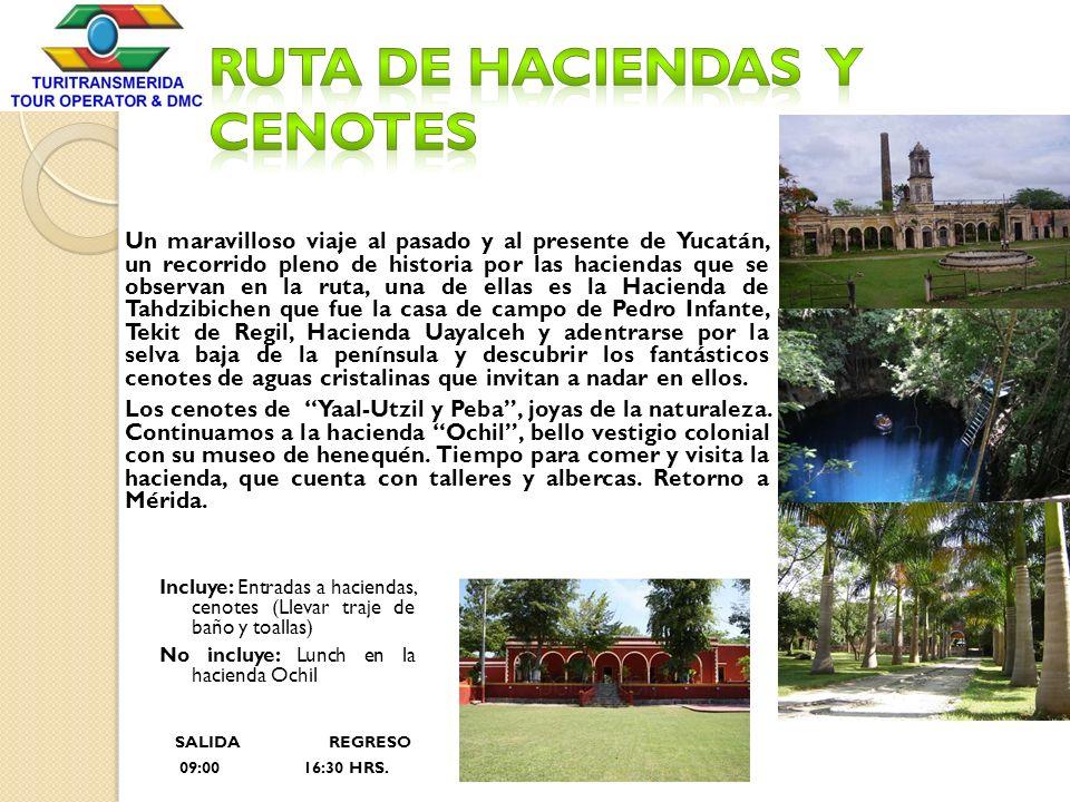 Ruta de Haciendas y Cenotes