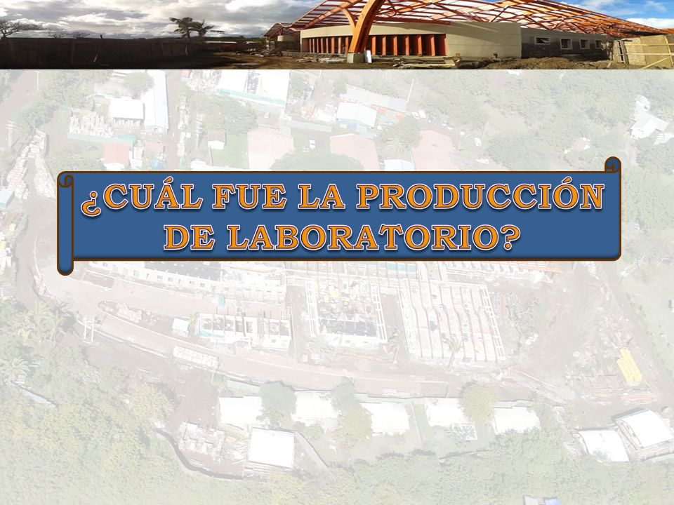 ¿CUÁL FUE LA PRODUCCIÓN