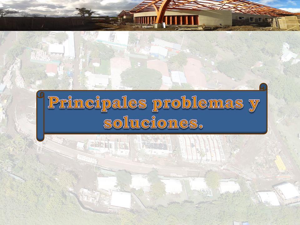 Principales problemas y