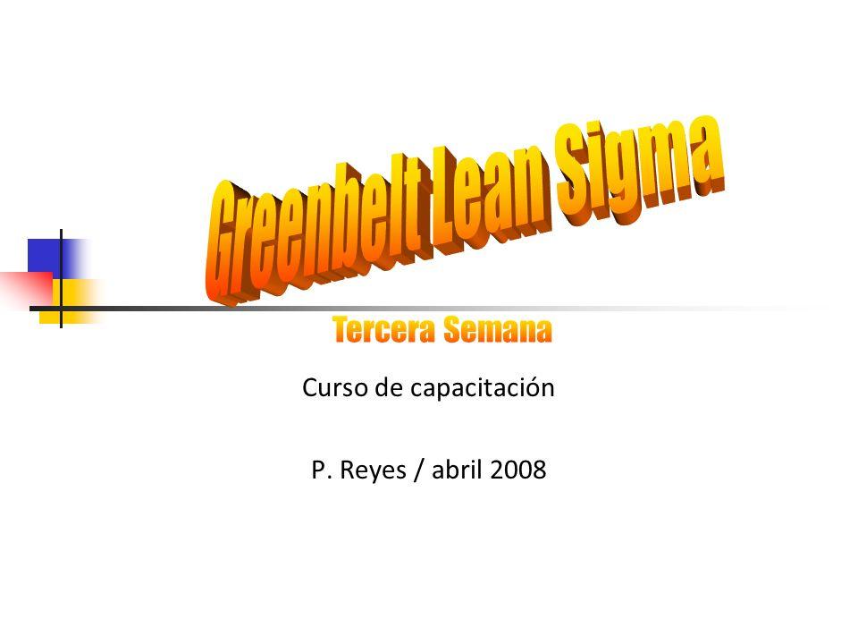 Curso de capacitación P. Reyes / abril 2008