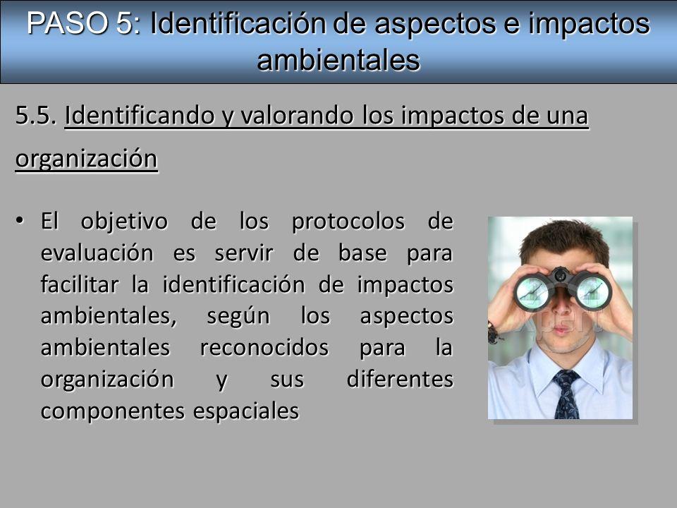 5.5. Identificando y valorando los impactos de una organización