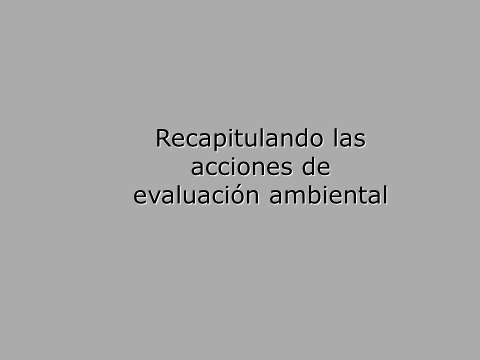 Recapitulando las acciones de evaluación ambiental