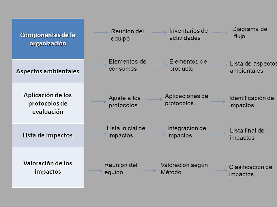 Componentes de la organización