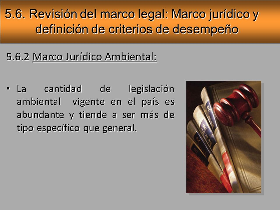 5.6. Revisión del marco legal: Marco jurídico y definición de criterios de desempeño