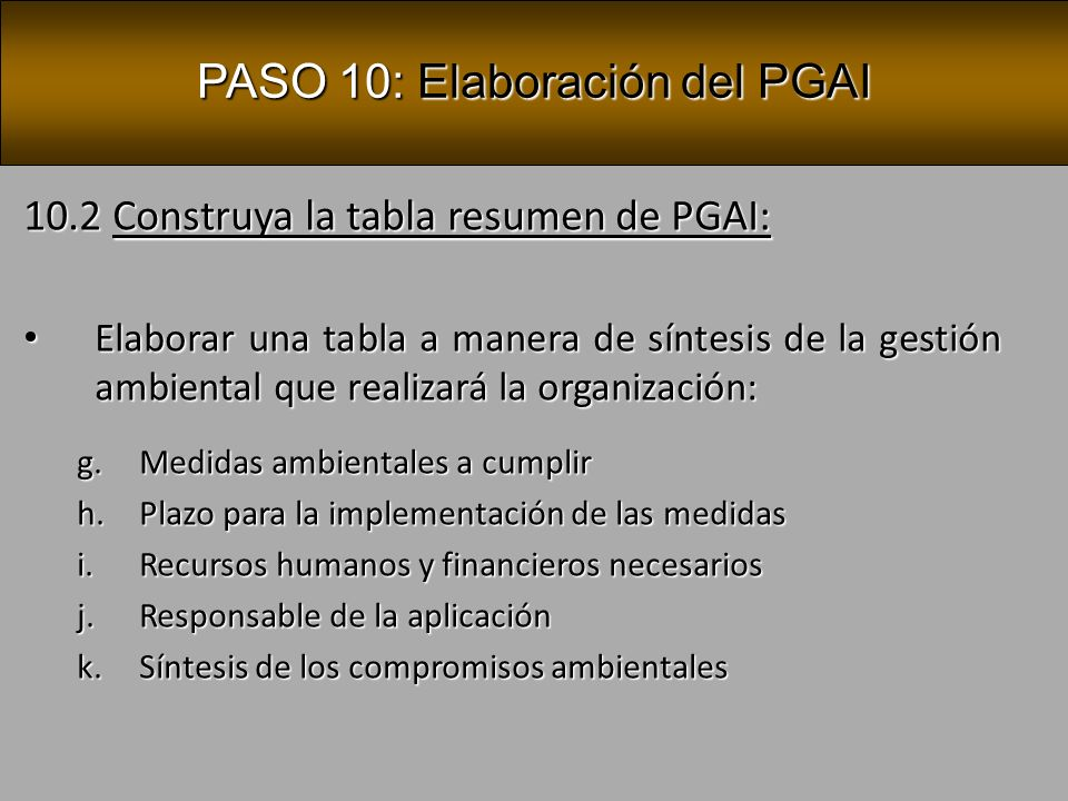 PASO 10: Elaboración del PGAI