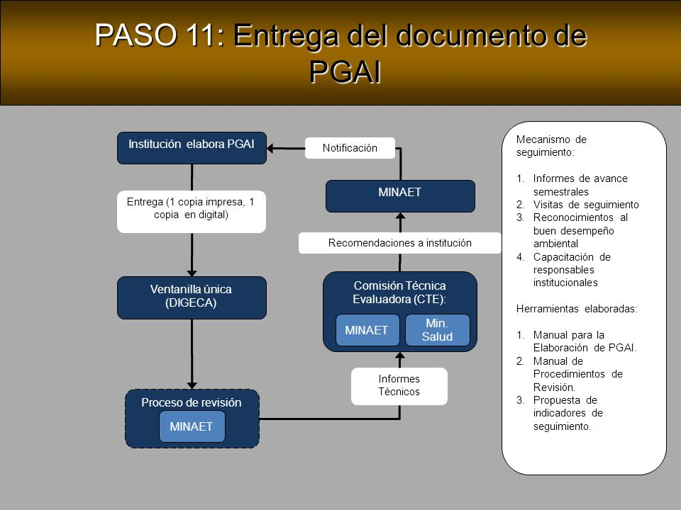 PASO 11: Entrega del documento de PGAI