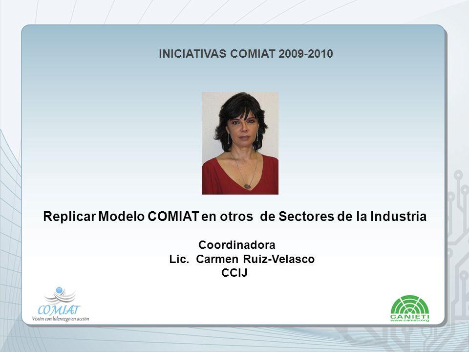 Replicar Modelo COMIAT en otros de Sectores de la Industria