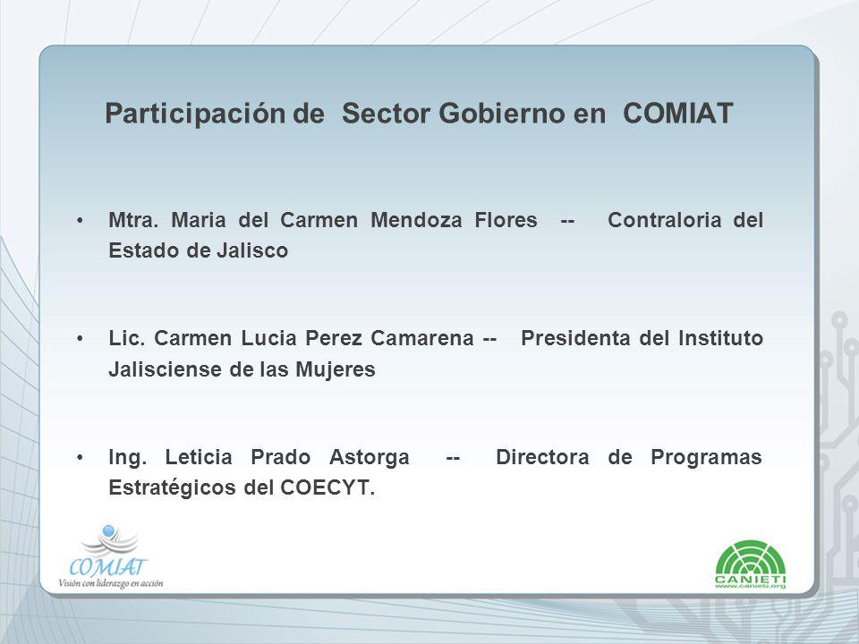 Participación de Sector Gobierno en COMIAT
