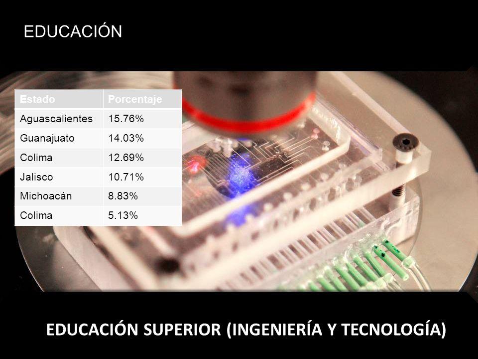EDUCACIÓN SUPERIOR (INGENIERÍA Y TECNOLOGÍA)