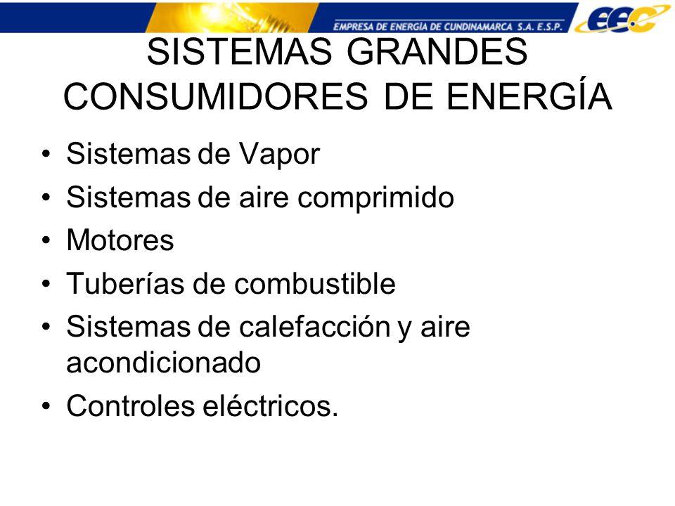 SISTEMAS GRANDES CONSUMIDORES DE ENERGÍA
