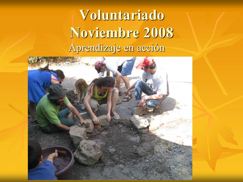 Voluntariado Noviembre 2008