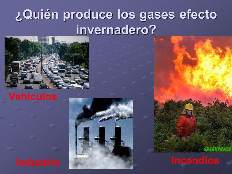 ¿Quién produce los gases efecto invernadero