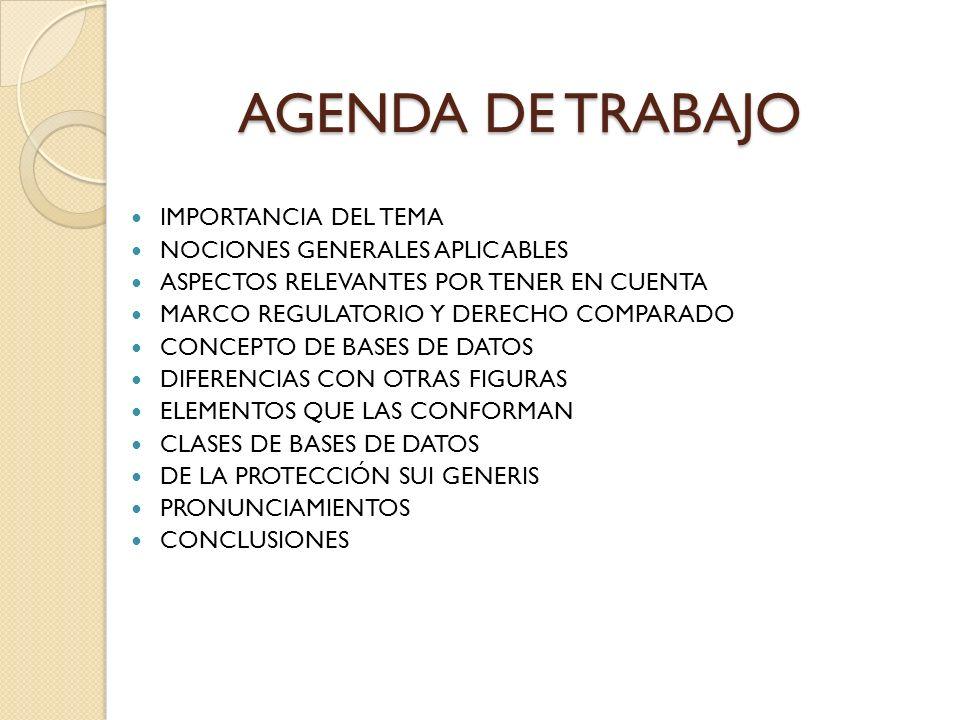 AGENDA DE TRABAJO IMPORTANCIA DEL TEMA NOCIONES GENERALES APLICABLES